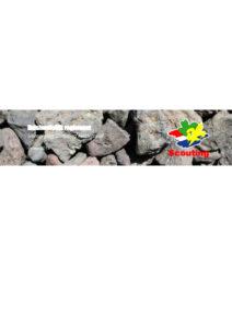 thumbnail of Huishoudelijk Reglement – Scouting Nederland